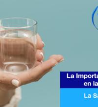 La importancia de el Agua en la Estética y La Salud Dental.